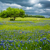 2017_4_15-16 Texas Hill Country-383-2