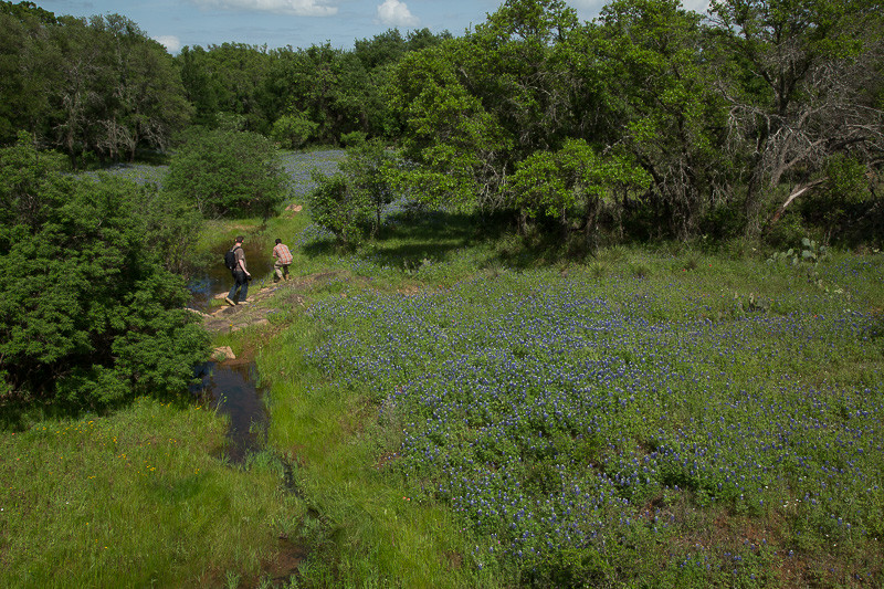 2017_4_15-16 Texas Hill Country-70