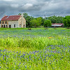 2017_4_15-16 Texas Hill Country-248-2