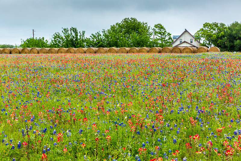 2017_4_15-16 Texas Hill Country-78-2