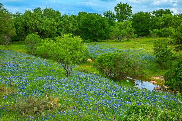 2017_4_15-16 Texas Hill Country-5
