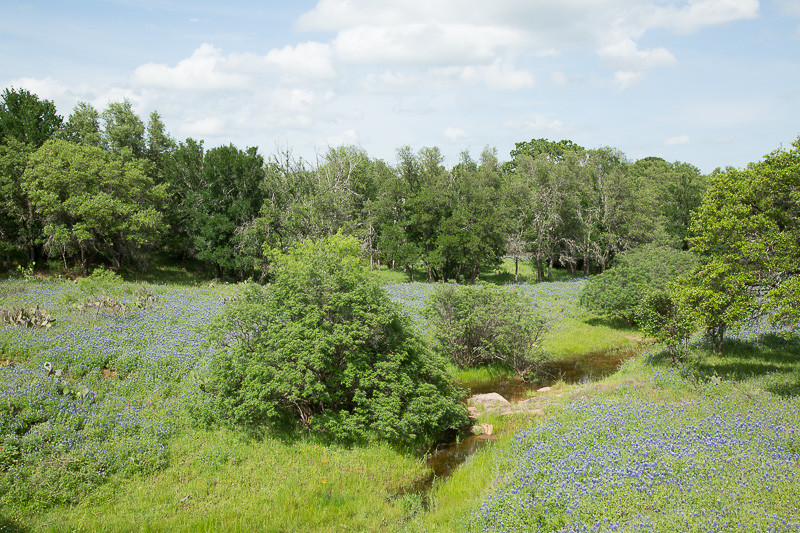 2017_4_15-16 Texas Hill Country-114