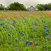 2017_4_15-16 Texas Hill Country-105-2