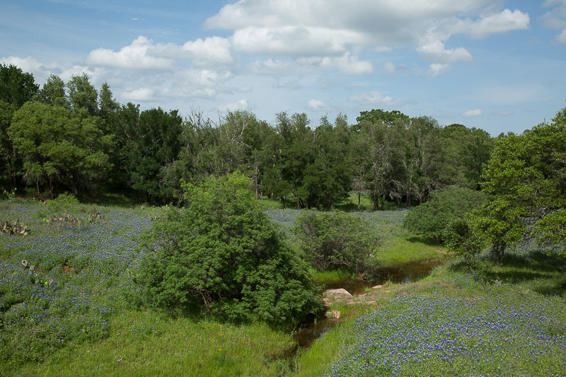2017_4_15-16 Texas Hill Country-115