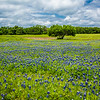 2017_4_15-16 Texas Hill Country-457-2