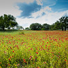 2017_4_15-16 Texas Hill Country-283