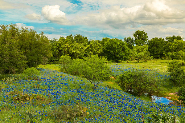 2017_4_15-16 Texas Hill Country-7
