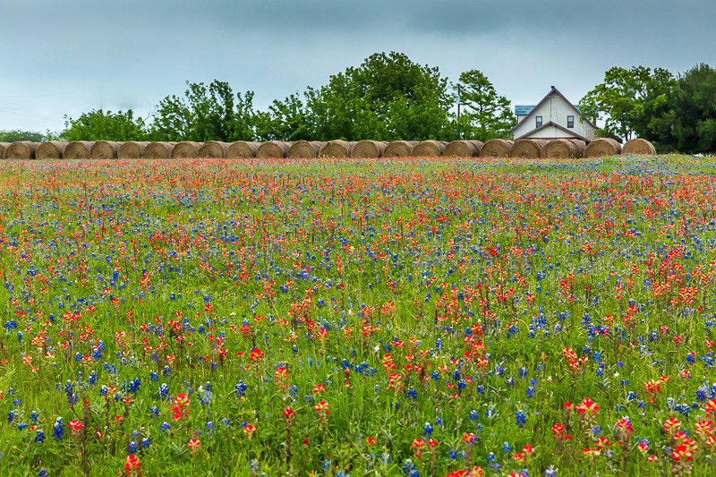 2017_4_15-16 Texas Hill Country-77-2