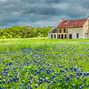 2017_4_15-16 Texas Hill Country-233-2