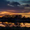 2015_12_23 Cypress Rosehill Sunset-3547
