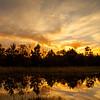 2015_12_19 Road Trip Eagle Lake-3420