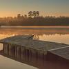 2016_1_13 Northshore Park Woodlands Sunrise-4368