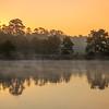 2016_1_13 Northshore Park Woodlands Sunrise-4313