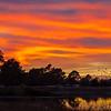 2015_12_23 Cypress Rosehill Sunset-3640