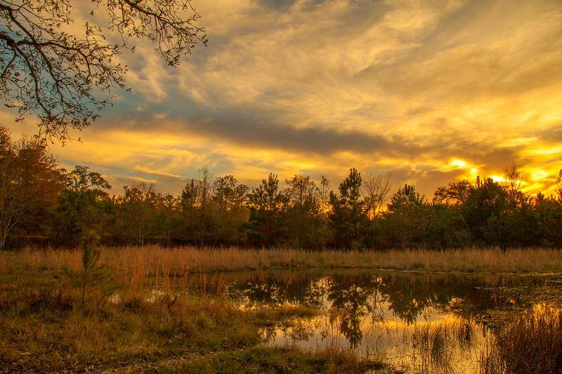 2015_12_19 Road Trip Eagle Lake-3412