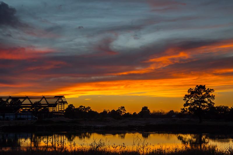 2015_12_23 Cypress Rosehill Sunset-3626
