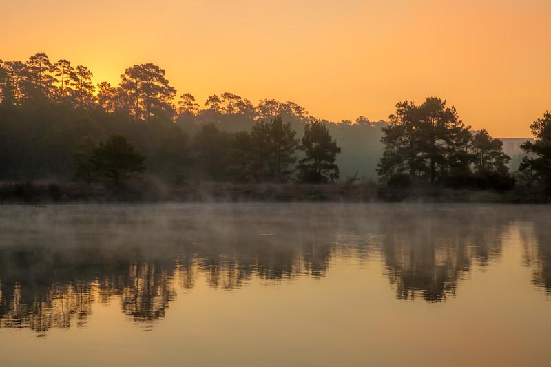 2016_1_13 Northshore Park Woodlands Sunrise-4313-2