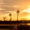 2016_1_19 Telge Sunset -4548