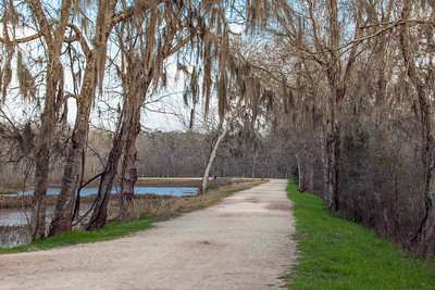 2016_2_13 Brazos Bend State Park-5423
