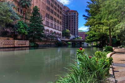 Riverwalk Flower HDR
