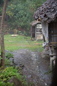 ChiangMia-Trekking-571