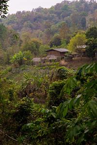 ChiangMia-Trekking-373