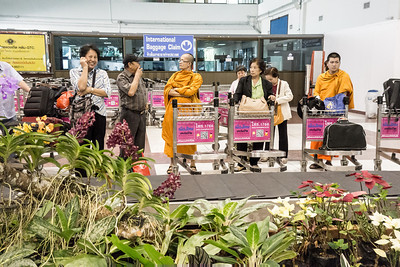 Chiangrai airport complete with a centre aisle of flowering orchids.