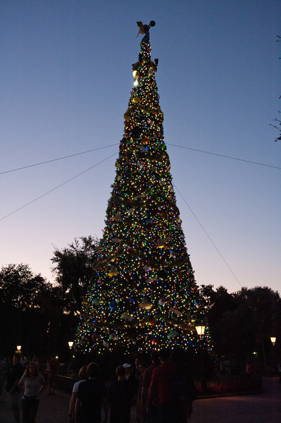Christmas Tree in Epcot.
