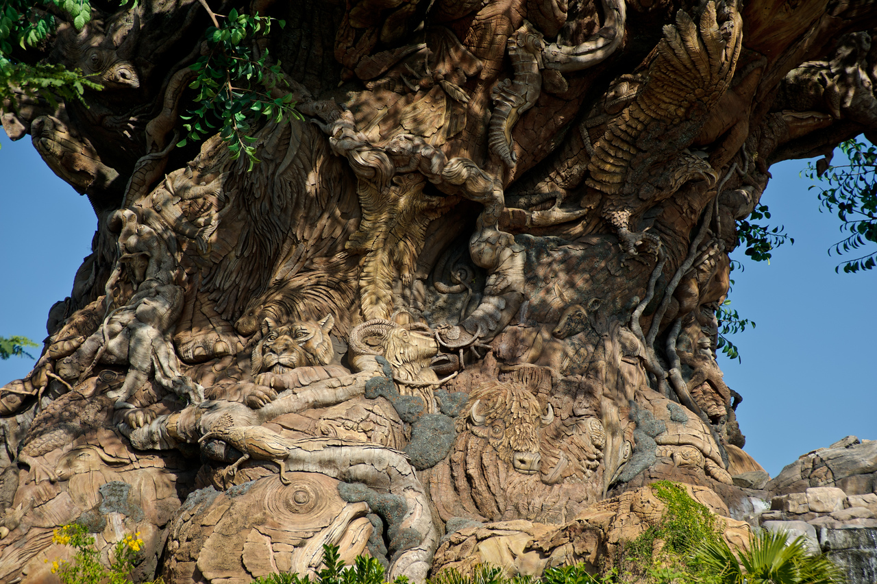 The Tree of Life at the Animal Kingdom.