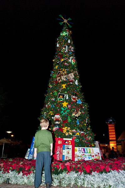 Vincent admiring the Christmas tree in Downtown Disney.