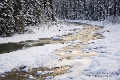 Poboktan Creek, Jasper National Park, in early winter