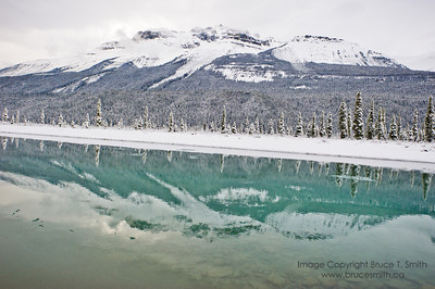 Winter mountain reflection  Fresh early-winter snow, reflected in the North Saskatchewan River, Banff National Park.