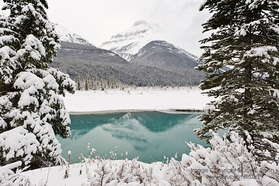 Early winter reflection, North Saskatchewan River, Banff National Park