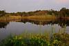 Daveys Lake - Cape May Point, NJ - 2012