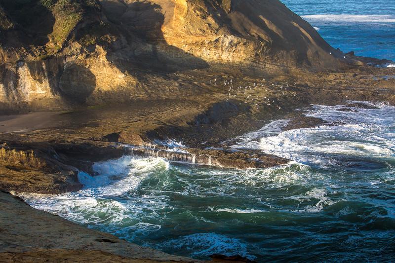 2017_9_10 Day 1 Oregon Coast-1089