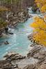 Vermilion river in autumn