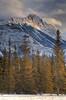 Winter scene of a mountain peak near Jasper, Alberta