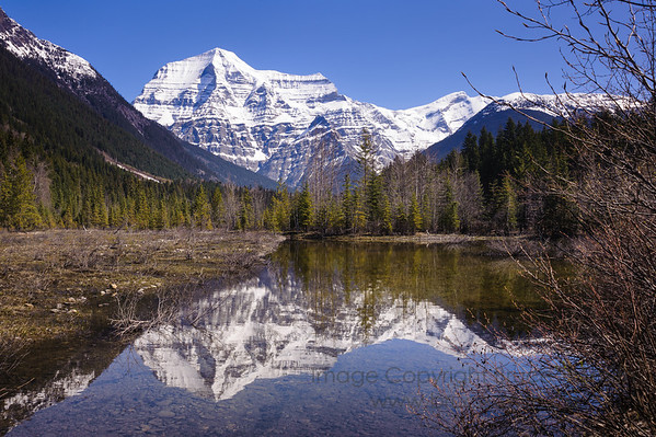 Mount Robson in springtime