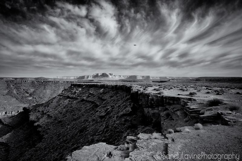 Goosenecks Horizon