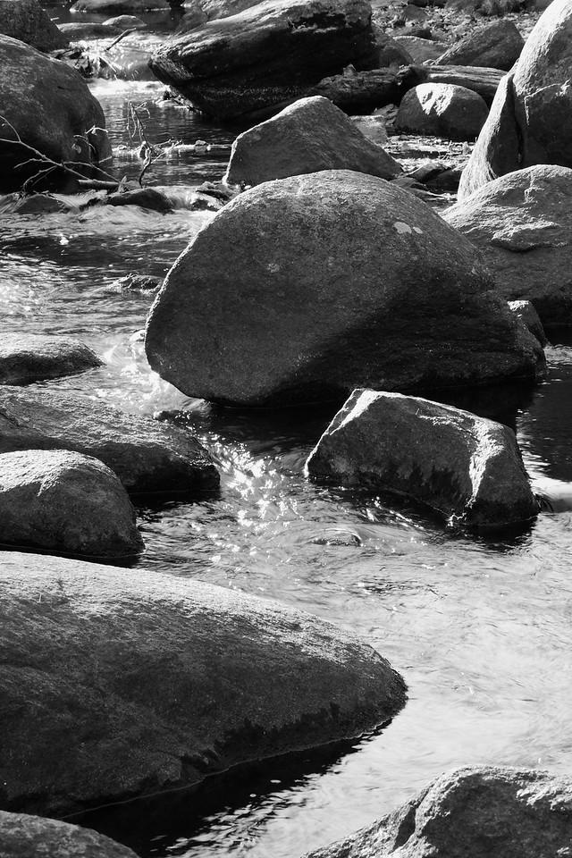 A River Runs Through Them