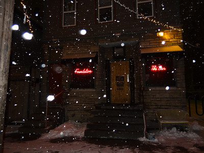 Tikki in the winter.