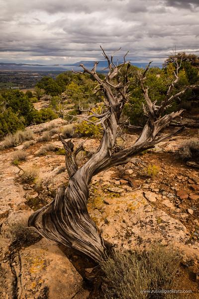 201609 Colorado Trip-0314