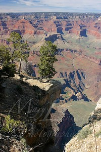 Arizona 2005_253