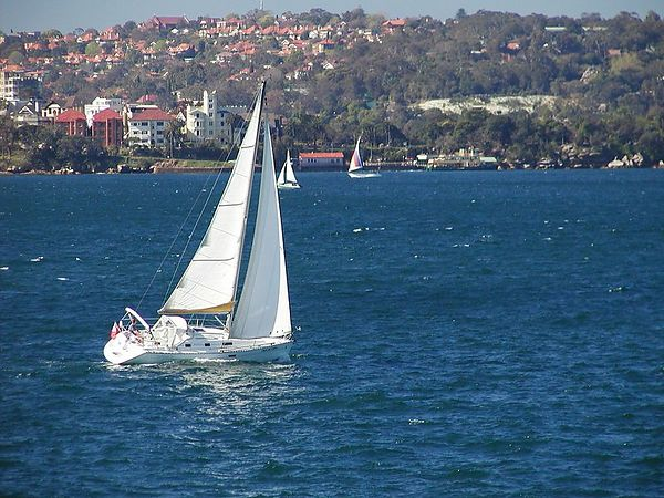 Sydney is a big time sailing town - they take their boating seriously.