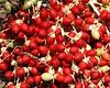 Coffee beans at a coffee plantation on Molokai