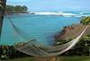 Hammock at the Hilton Waikoloa