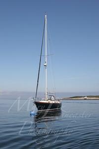Sailboat_9541