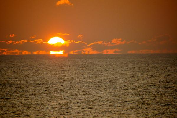 Sunrise Bluefin