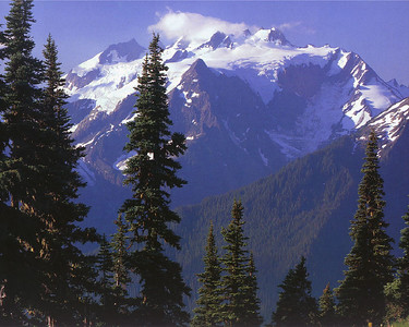 Alright, so I didn't take this picture. I found it on the internet years ago and I have no idea who's photo it is.  It's a gorgeous shot however, of the north face of Mount Olympus, taken from the far side of the Hoh River valley. This north face is the side on which the vast majority of the climbing takes place.