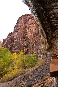 Looking from Weeping Rock - Zion National Park